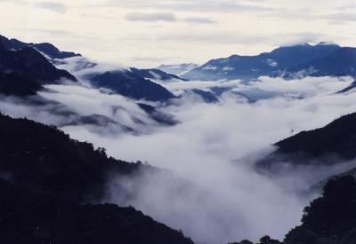 阿里山风景区介绍阿里山由来-阿里山联合旅游网
