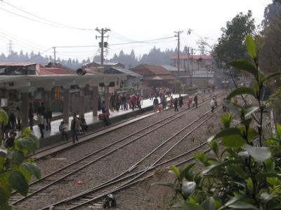 阿里山火車003